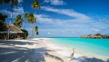 Surfurlaub Malediven