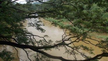 Flüsse sind voll mit Wasser während der Regenzeit